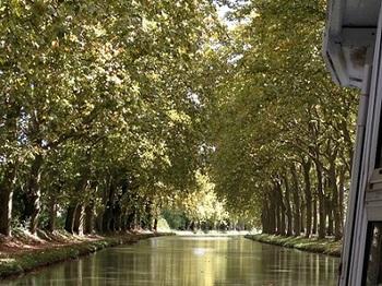 canal.du.midi_3.JPG